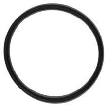 CHP 1-2521-1 O-Ring Viton For 1949 Sprayer from Carter-Waters