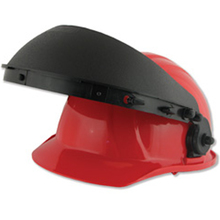 ERB 015182 Helmet w/Out Shield from Carter-Waters
