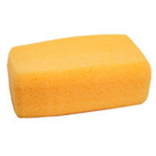 MAG 592 Magnolia Sponges Hydrohilated Rectangle from Carter-Waters